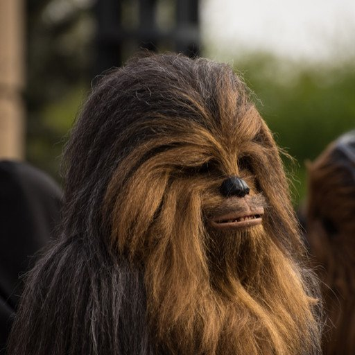 Chewbacca the Wookie. Image by M. Mckinney Photography (via Shutterstock).